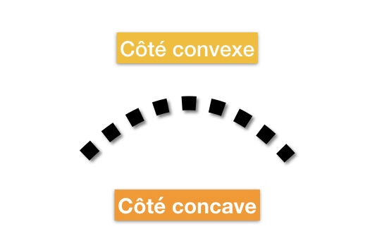Explication différence concave convexe