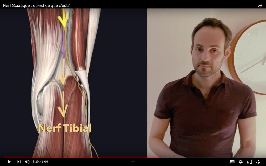 Position du nerf tibial