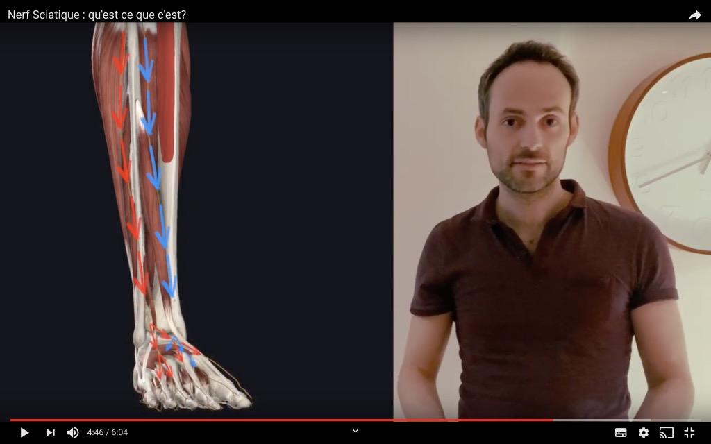 Position du nerf tibial dans la jambe