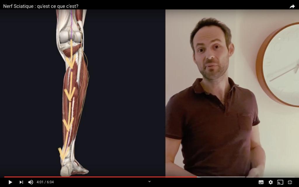 Position nerf tibial dans la jambe